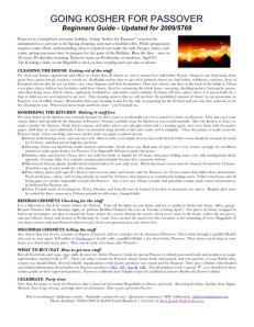 passover-guide-2009-pic